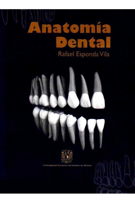 Anatomía Dental. Esponda