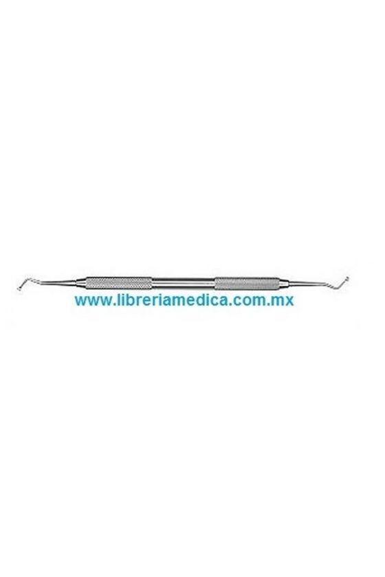 Cucharilla de Dentina 33L...